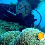 沖縄ダイビング 2月17日 サンゴ体験ダイビング たく・えりな