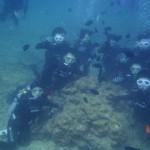 沖縄ダイビング☆2/25 珊瑚体験ダイビング たく・とも・えりな・しおん・とよ
