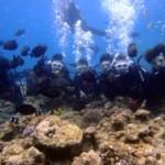 沖縄ダイビング☆4/6 青の洞窟ダイビング しおん・りょうけん・えりな