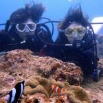 沖縄ダイビング☆5/5 特上!サンゴ体験ダイビング 8時 ゆうき