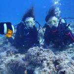 沖縄ダイビング☆5/14 青の洞窟体験ダイビング 15時 しおん・りょうけん