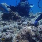 沖縄ダイビング☆5/14 青の洞窟体験ダイビング 10時 えりな・りょうけん