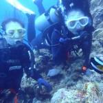 沖縄ダイビング☆ 5/28 青の洞窟体験ダイビング りょうけん