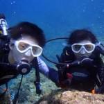 沖縄ダイビング☆8/31  青の洞窟体験ダイビング 10時~ なすび