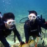 沖縄ダイビング☆ 9/30 青の洞窟体験ダイビング 10時~ ゆうき