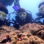沖縄ダイビング☆9/28 サンゴのお花畑体験ダイビング 14時 えりな・りょうけん