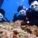 沖縄ダイビング☆11/30 サンゴのお花畑体験ダイビング 10:30 しおん・えりな
