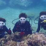 沖縄ダイビング☆12/31 珊瑚礁体験ダイビング 9:00~ しおん・ゆうり