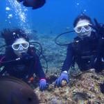 沖縄ダイビング☆ 1/3 青の洞窟体験ダイビング2本コース しおん