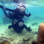 沖縄ダイビング☆1/12 珊瑚体験ダイビング 14時 しおん