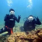 沖縄ダイビング☆1/15 珊瑚のお花畑体験ダイビング 12時 しおん