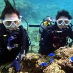 沖縄ダイビング☆2/26 珊瑚礁体験ダイビング 10:30 しおん