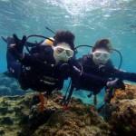 沖縄ダイビング☆2/26 珊瑚礁体験ダイビング 9:00 ゆうき