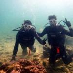 沖縄ダイビング☆3/28  珊瑚のお花畑体験ダイビング  えりな