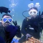 沖縄ダイビング☆3/29 沖縄大サンゴ体験ダイビング ゆーり