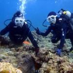 沖縄ダイビング☆4/2 青の洞窟体験ダイビング 15:30 しおん