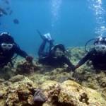 沖縄ダイビング☆4/26 青の洞窟体験ダイビング 13:00 しおん・ゆうき