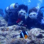 沖縄ダイビング☆6/29 青の洞窟体験ダイビング 8時 ゆうり