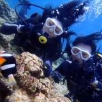 沖縄ダイビング☆7/3 青の洞窟体験ダイビング 8:00 たく