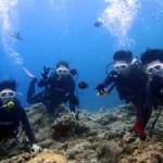 沖縄ダイビング☆7/9 青の洞窟体験ダイビング 13:00 ゆうき・しおん