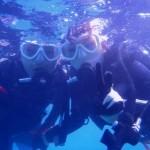 沖縄ダイビング☆8/30 珊瑚礁体験ダイビング 14:30 なすび