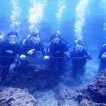 沖縄ダイビング☆12/31 珊瑚体験ダイビング 11:30 しおん・ゆうき
