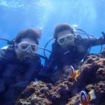 沖縄ダイビング☆1/30 青の洞窟体験ダイビング 9:00 ゆうき