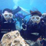 沖縄ダイビング☆ 2/22 珊瑚礁体験ダイビング 15時~ えりな