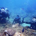 沖縄ダイビング☆2/25 珊瑚礁体験ダイビング 10:00 しおん・えりな・なすび