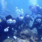 沖縄ダイビング☆2/27 13時~ 珊瑚体験ダイビング えりな・しおん・なすび