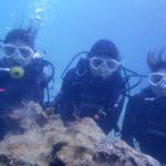 沖縄ダイビング☆3/2  珊瑚礁体験ダイビング 14:00 しおん・なすび