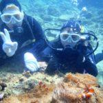 沖縄ダイビング☆3/4  珊瑚礁体験ダイビング 13:00 しおん