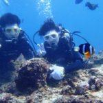 沖縄ダイビング☆3/5  青の洞窟体験ダイビング  13:00 なすび・しおん