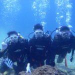 沖縄ダイビング☆3/8  珊瑚礁体験ダイビング 10:30 なすび