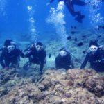 沖縄ダイビング☆3/8  珊瑚礁体験ダイビング 13:00 えりな・なすび