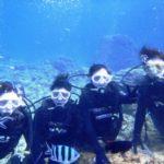沖縄ダイビング☆3/8  珊瑚礁体験ダイビング 8:00 なすび・えりな