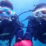 沖縄ダイビング☆3/12  珊瑚礁体験ダイビング 13:00  しおん