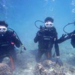 沖縄ダイビング☆3/15    珊瑚体験ダイビング    13:00    なすび