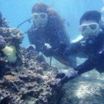 沖縄ダイビング☆3/15    珊瑚体験ダイビング    10:30    えりな