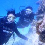 沖縄ダイビング☆3/15    珊瑚体験ダイビング    8:30    えりな