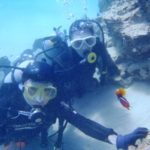 沖縄ダイビング☆3/15    珊瑚体験ダイビング    13:00    えりな