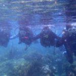 沖縄ダイビング☆3/15    珊瑚体験ダイビング    10:30    しおん・ゆうき