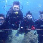 沖縄ダイビング☆3/16    珊瑚体験ダイビング    13:00  しおん・えりな