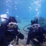沖縄ダイビング☆ 3/22   珊瑚体験ダイビング9:00~  えりな