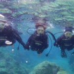 沖縄ダイビング☆3/26  珊瑚礁体験ダイビング 13:00 しおん