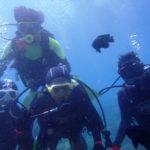 沖縄ダイビング☆3/28  ビーチFUN+体験ダイビング  なすび・しおん
