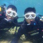 沖縄ダイビング☆3/28  珊瑚礁体験ダイビング 10:00  しおん