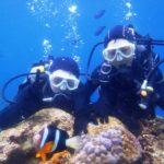 沖縄ダイビング☆3/29  青の洞窟体験ダイビング 12:30  えりな