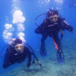 沖縄ダイビング☆3/31  サンゴ礁体験ダイビング 13:00 たく