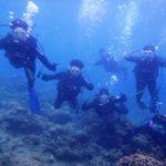 沖縄ダイビング☆ 6/3 9時~ 珊瑚体験ダイビング たく・しおん